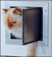 Wall-Mouned Cat Doors