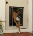 PlexiDor Door-Mounted Dog Doors