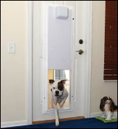 PlexiDor Electronic Dog Doors