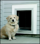 PlexiDor Wall-Mounted Dog Doors